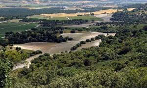 Paisaje del valle del Duero desde el páramo