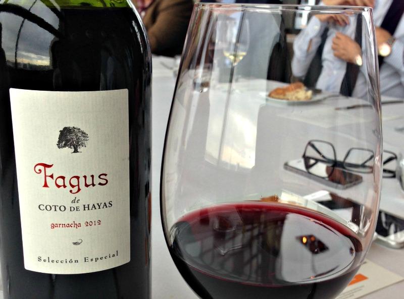 Presentación Aragón: Fagus 2012