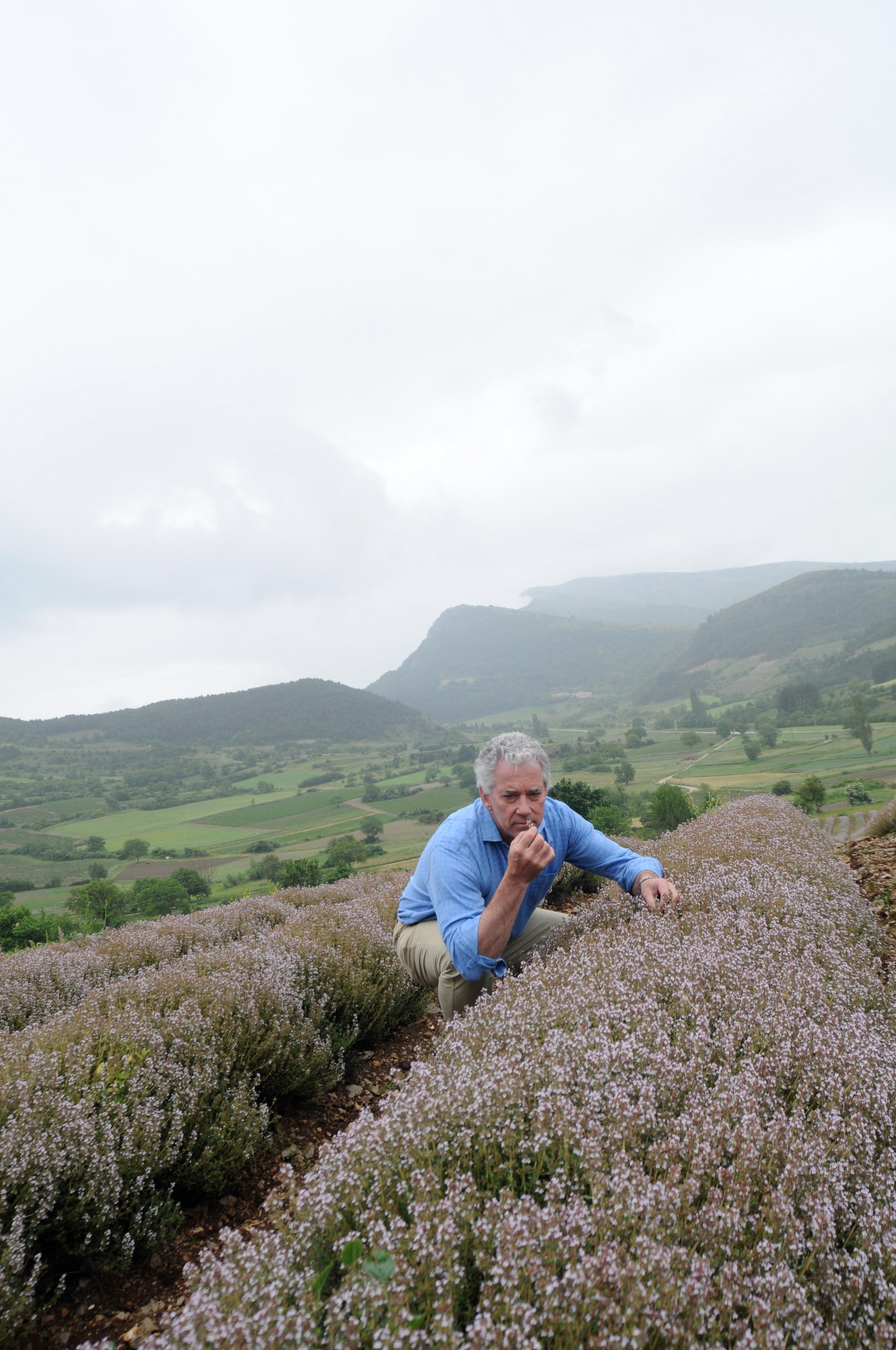 Aquí tenéis a Charles Rolls, fundador de Fever-tree, en los campos de lavanda de la Provenza :)