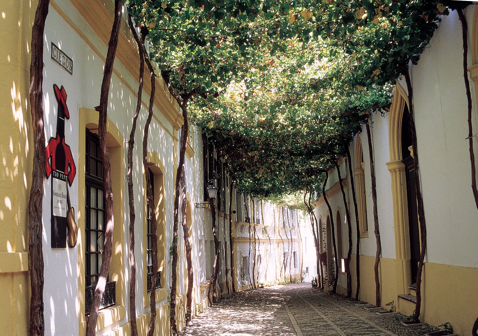 Bodega González Byass Calle Ciegos