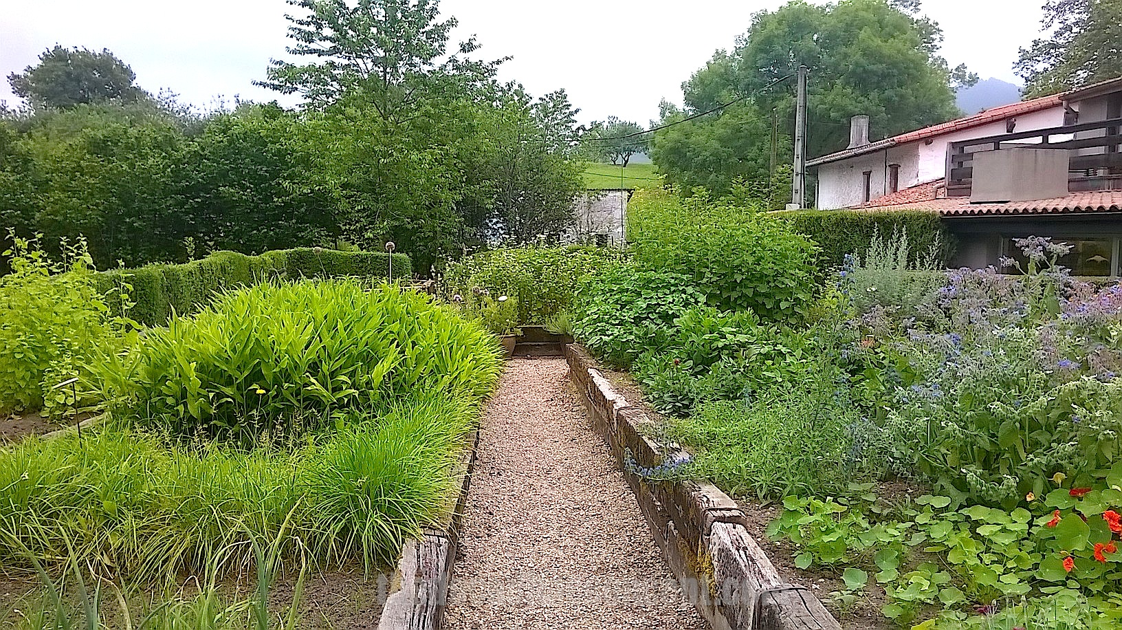 Mugaritz el jard n bot nico escondido en errenter a for El jardin escondido