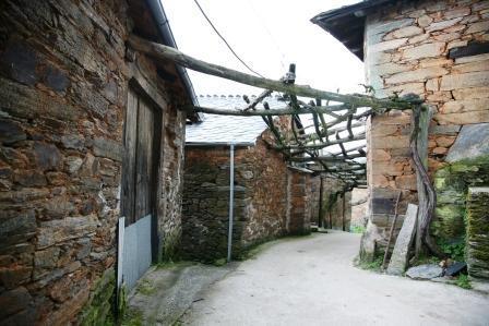 atlas cultivo tradicional viñedo