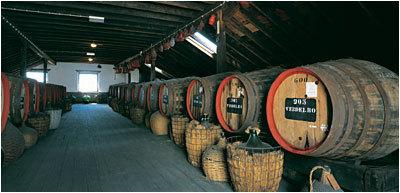 como se elaboran los vinos de madeira