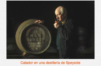 whisky cata vino