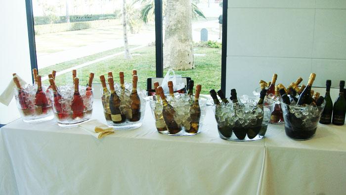 cata vinos espumosos taller maridaje