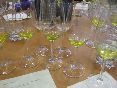 cata-de-aceite-oliva-virgen-extra-aove
