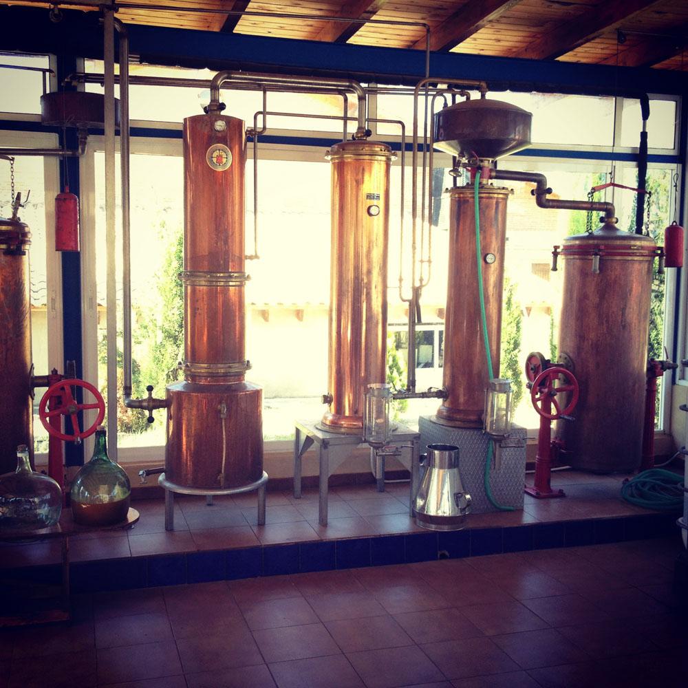 destilados-cabezas-colas-flemas-holandas
