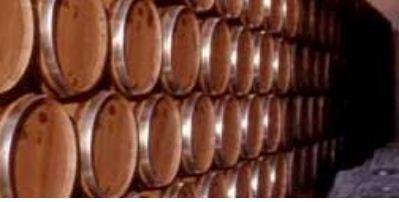 barricas de vino