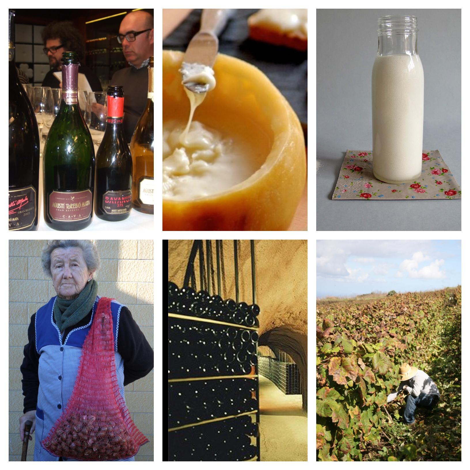 los-mejores-posts-articulos-vino-gastronomia-verema.