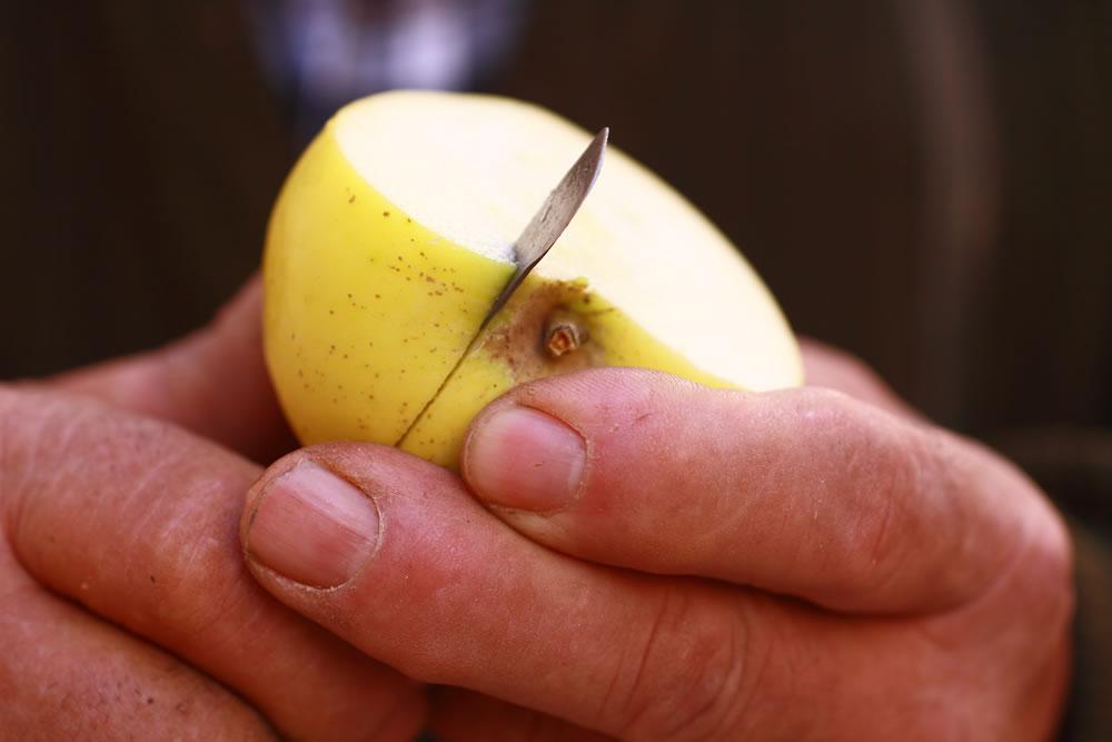 Cortando una manzana