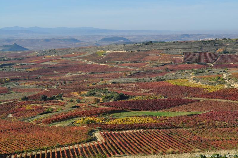 Ruta del vino de la rioja alavesa enoturismo de calidad for Hoteles con encanto en la rioja alavesa