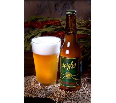 Cerveza Spigha