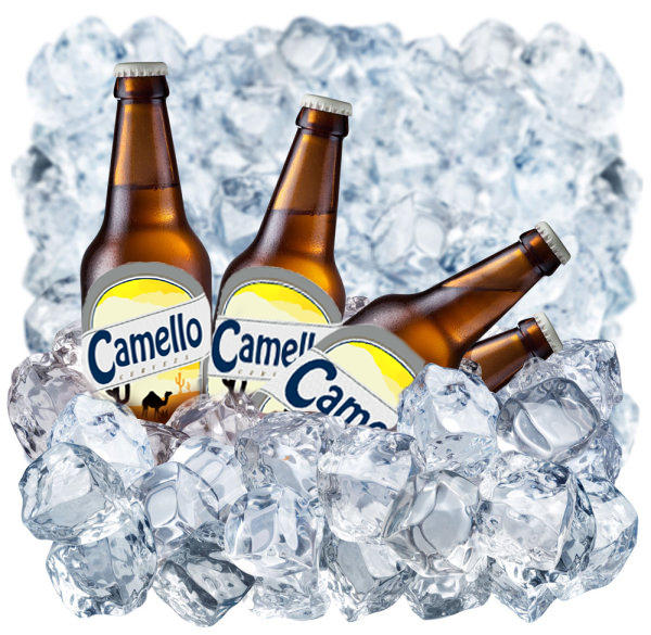 Cerveza de camello