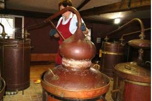 Destilando-el-orujo-de-albarino-en-Pazo-de-Senorans