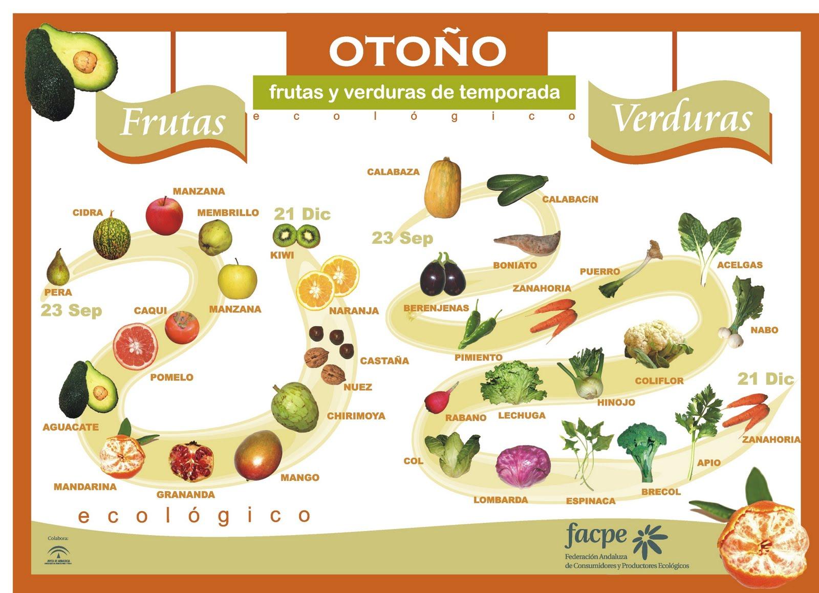 Frutas y Verduras - Otoño