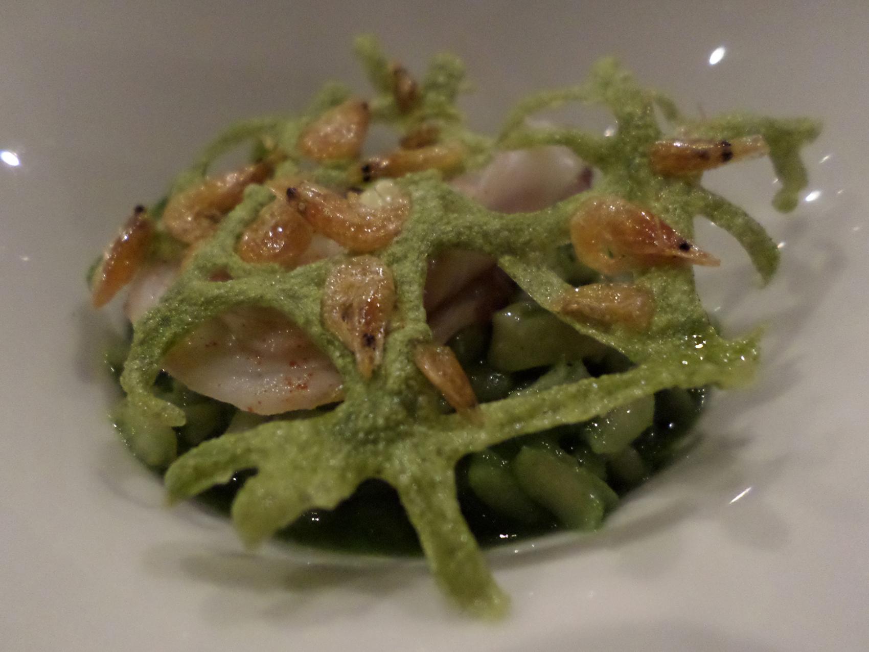 Aurelio_Gómez-Miranda_bloG-M_Restaurante_La_Salita_Rissoto_placton