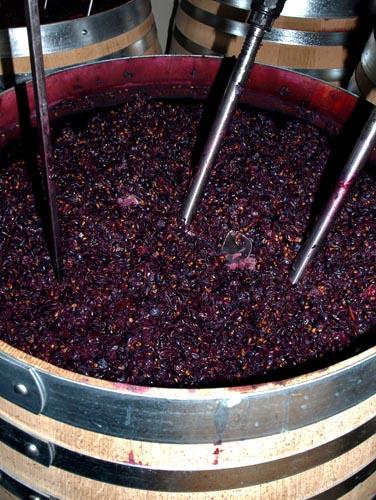 Elaboración de vino rosado por maceración