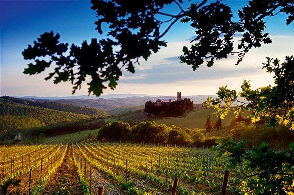 2. Italia: mejor región de vino del mundo