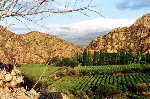 5. Argentina: mejor región de vino del mundo