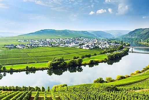 7. Alemania: mejor región de vino del mundo