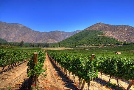 9. Chile: mejor región de vino del mundo