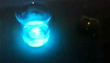 Bacterias luminosas