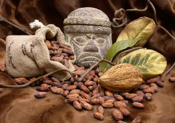 culturas Olmeca y el chocolate