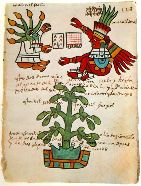 manuscrito sobre el chocolate