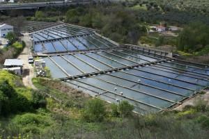vista general de la piscifactoria Riofrio