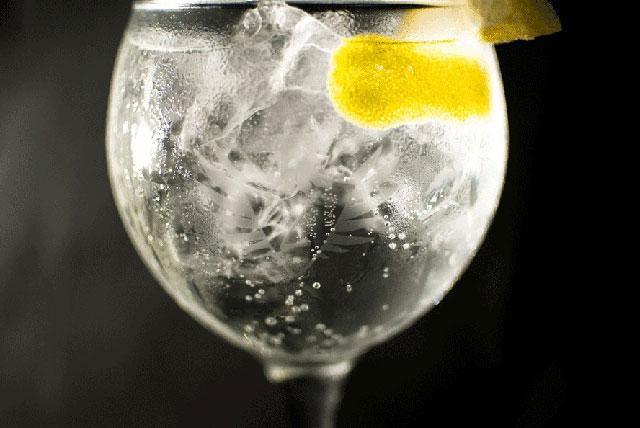 Gin tonic en copa de balon