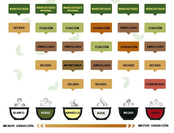 Tipos de té pola sua forma de producción
