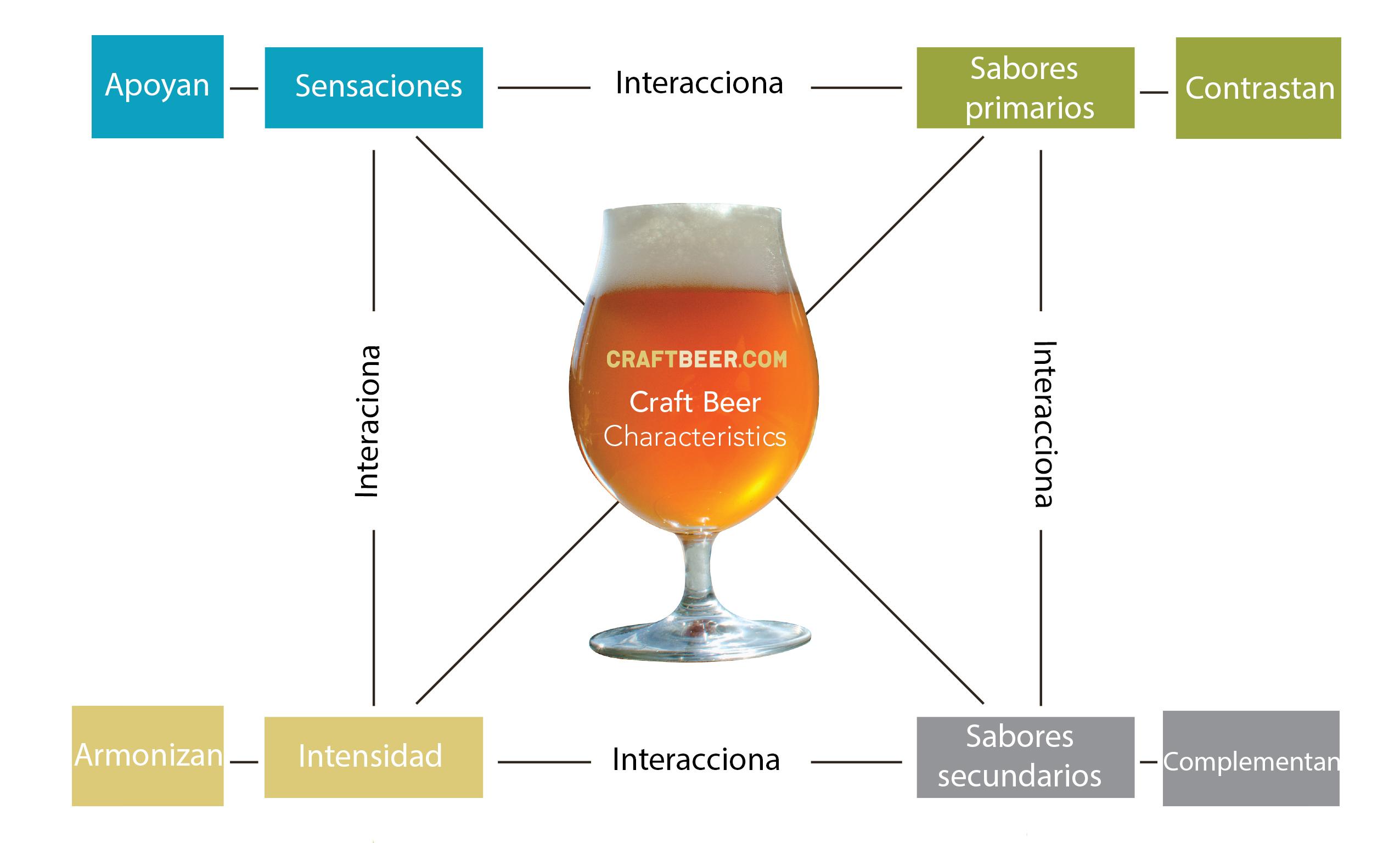 Caracterísiticas de la cerveza, maridaje