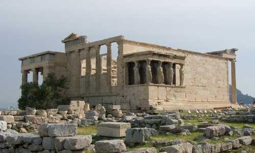 Olivo Partenon