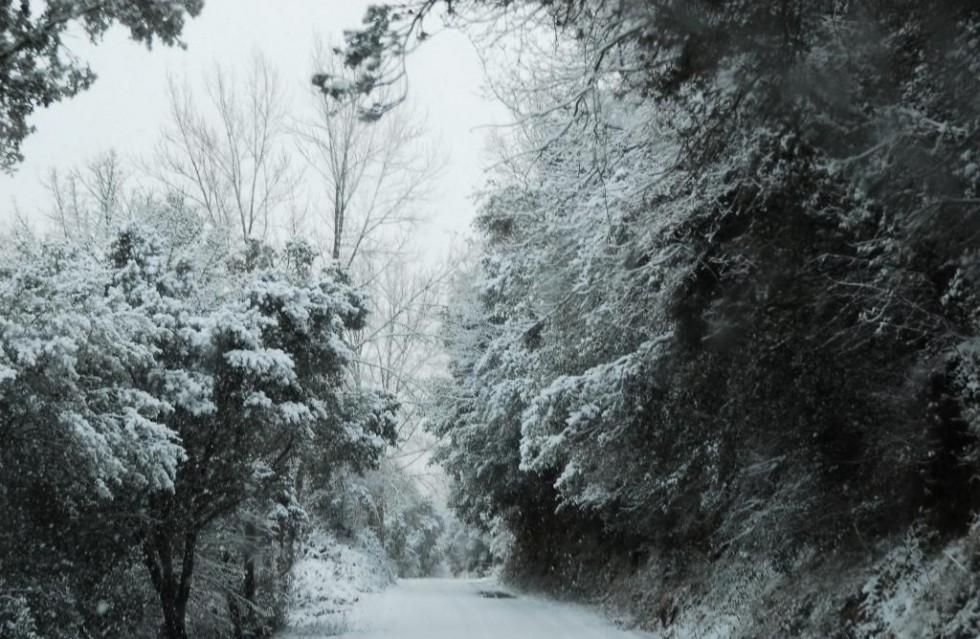 Santa Gadea Invierno