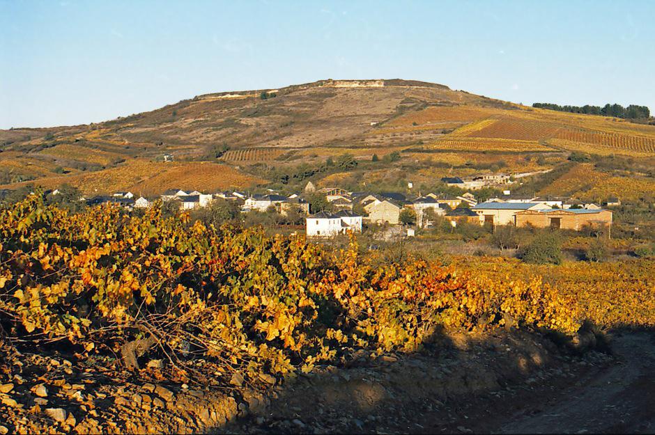 La Vizcaína de Vinos Paraje Valtuille de Abajo
