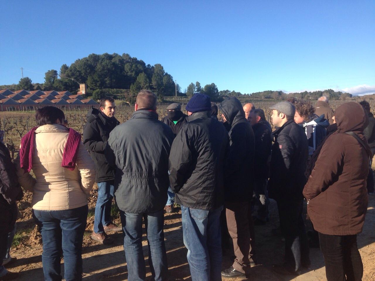 El grupo escucha atentamente las explicaciones sobre el suelo y las viñas.