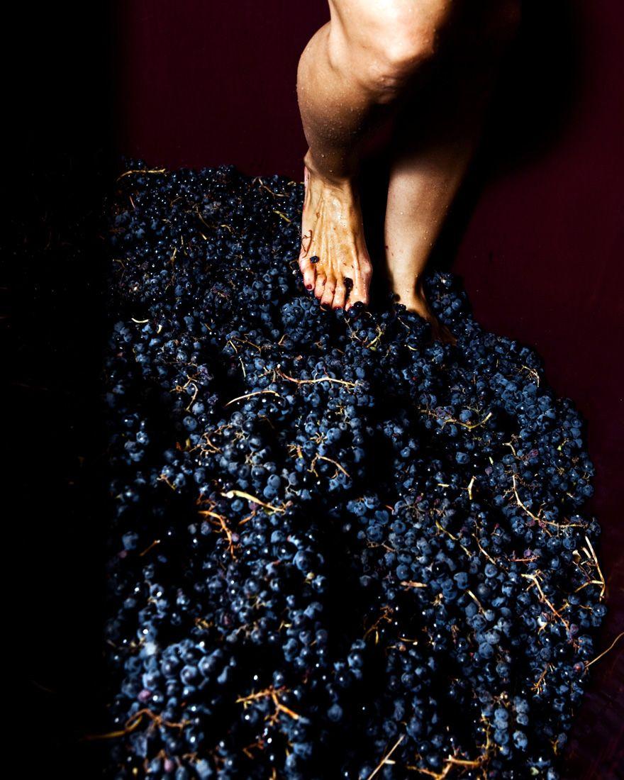 Sara Perez pisando uva