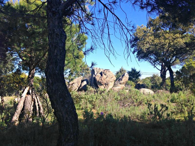 Visita a la bodega Las Moradas de San Martin: paisaje