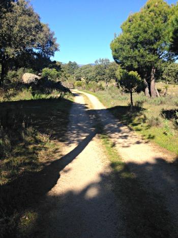 Visita a la bodega Las Moradas de San Martin  camino y paisaje faa52a6640e