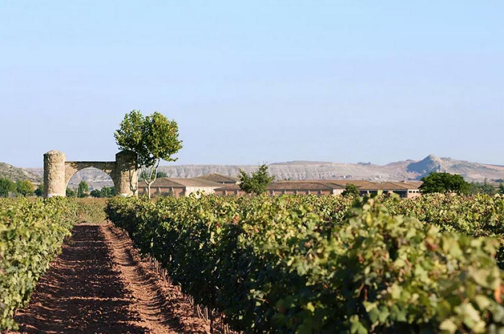 Encuentro Foreros Verema La Rioja 2015. Bodega Barón de Ley
