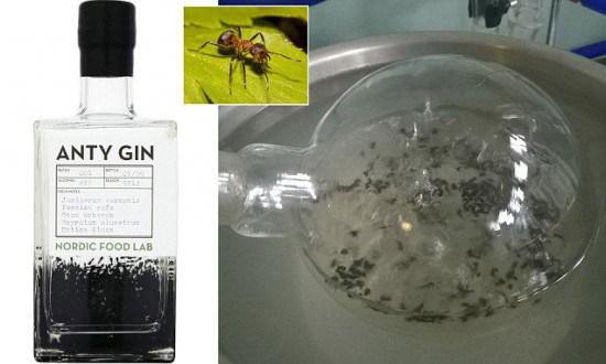 Anty Gin, la ginebra hecha con hormigas