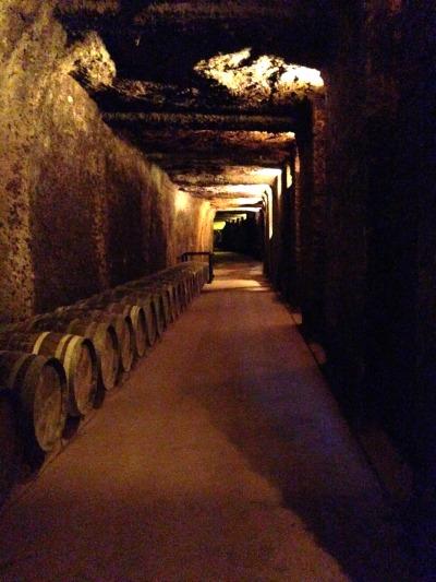 El entresiijo de calados (túneles) del patrimonio histórico de Paternina se empezó a excavar de la montaña alrededor del siglo XV