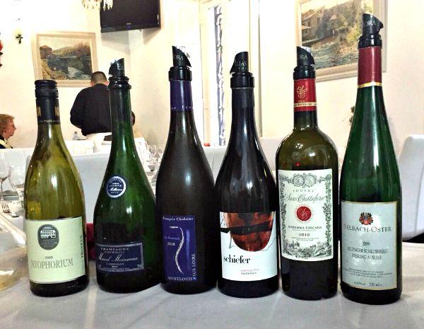 Los seis vinos de María, cata de Los Innombrables