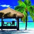 Ofertas viajes en Playa Del Carmen