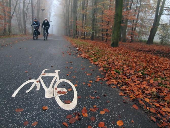 fietsroute door het Zuiderpark