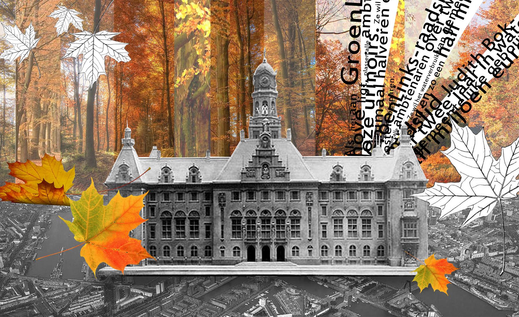 Herfst op het stadhuis
