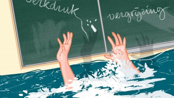 Het onderwijs