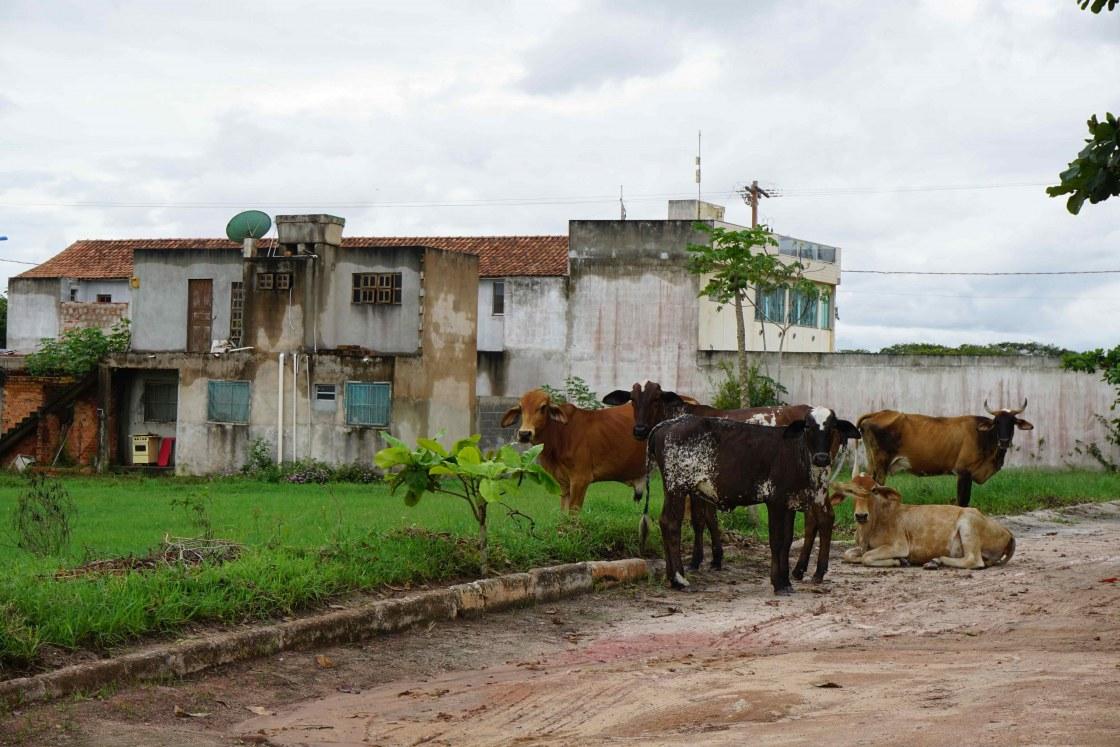 straat-Praia-das-Neves