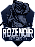 Vibby Partner — Rozenoir Esports
