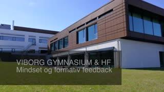 Viborg Gymnasium, Mindset, formativ feedback og forandring